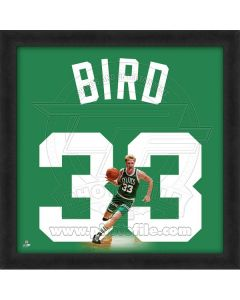 Larry Bird 20 x 20 Framed Photo